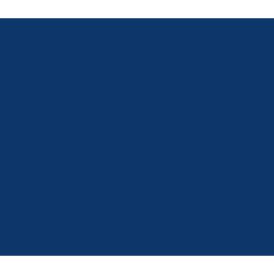 icona-sito-web